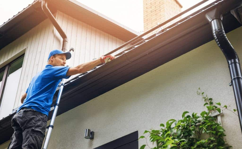 Gutter Cleaning Services in Andover, MN