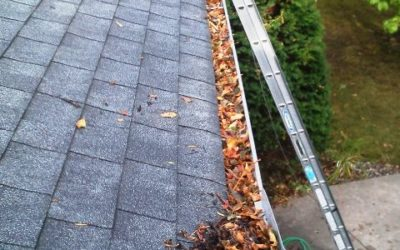Spring Cleaning: Why You Should Clean Your Gutters Every Spring